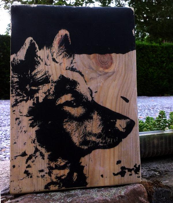 print op hout
